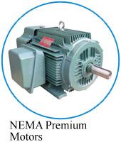 NEMA Premium motor