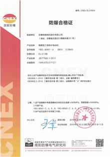 Ex d I Mb Explosion-proof certificate of mine motors