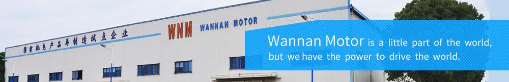 Wannan Motor