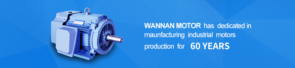 Wannan Motor has dedicated in maunfacturing industrial motors production for 60 years.