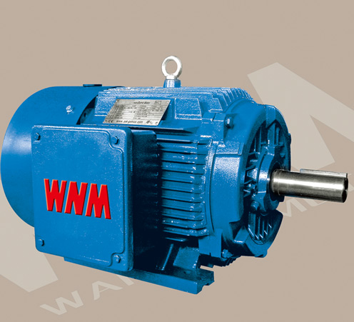 Three Phase Induction Motor Efficiency 28 Images Ie2