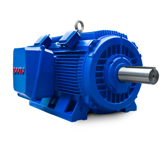 High efficiency motor speed adjustable motor high voltage High efficiency motors