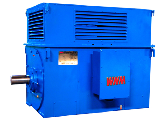 Y Series High Voltage and High Efficiency Three Phase Induction Motors