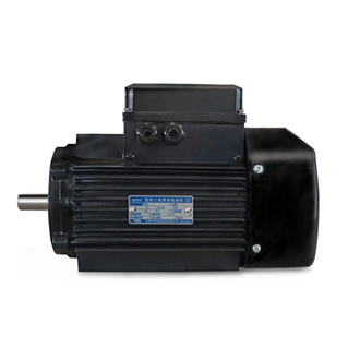 Custom Electric Motor Solutions