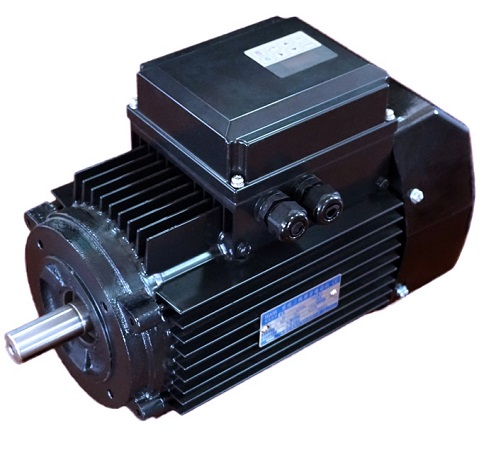 YZNP2 Series Smart Control Induction Motor