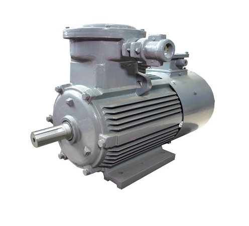 YBBP Series Flameproof Variable-frequency Adjustable-speed Induction Motors