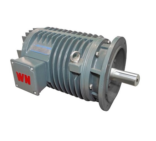 YG Series Induction Motors for Roller Table
