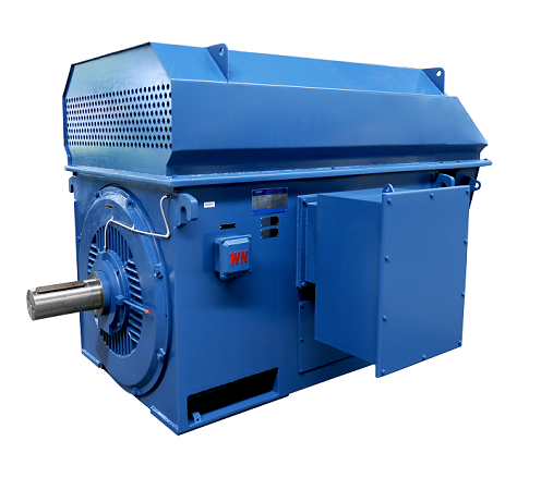 YTM / YHP / YMPS Series power station coal mill Motor