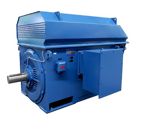 YTM / YHP / YMPS Series power station coal mill Motor